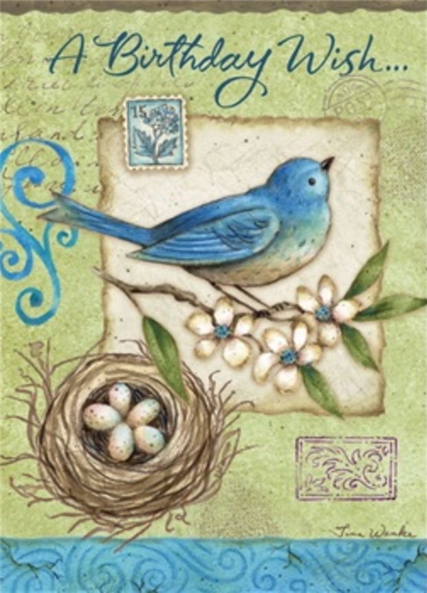 Birthday Card, Mountain Bluebird-birthday, card, mountain, bluebird
