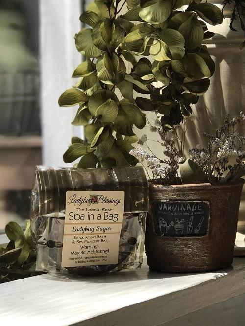 Handmade Loofah Soap - Ladybug Sugar-loofah, natural, vanilla, spa, Ladybug Blessings