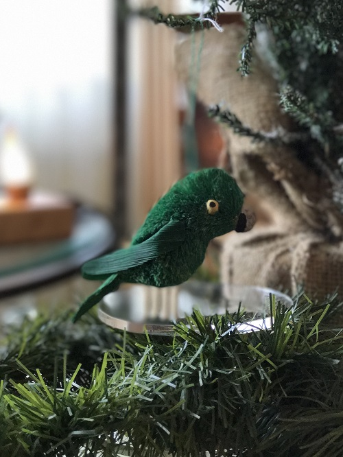 Parrot Brush Animal Ornament-parrot, brush animal