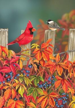 Mini Flag, Songbird Fence-mini flag, outdoor flag, songbird, birds, fence