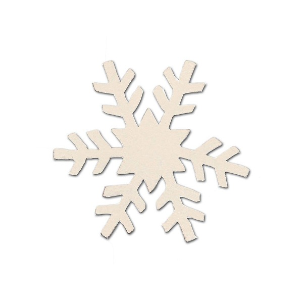 Snowflake Magnet, Medium-snow, magnet, photo, carol, roeda, display, board