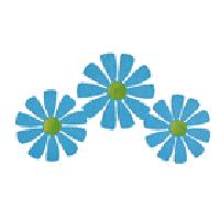 Mini Flower Trio, Blue-Roeda, magnet, magnetic, photo, display